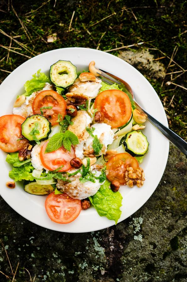 Salada misturada com queijo e os vegetais cozidos de cabra fotos de stock royalty free