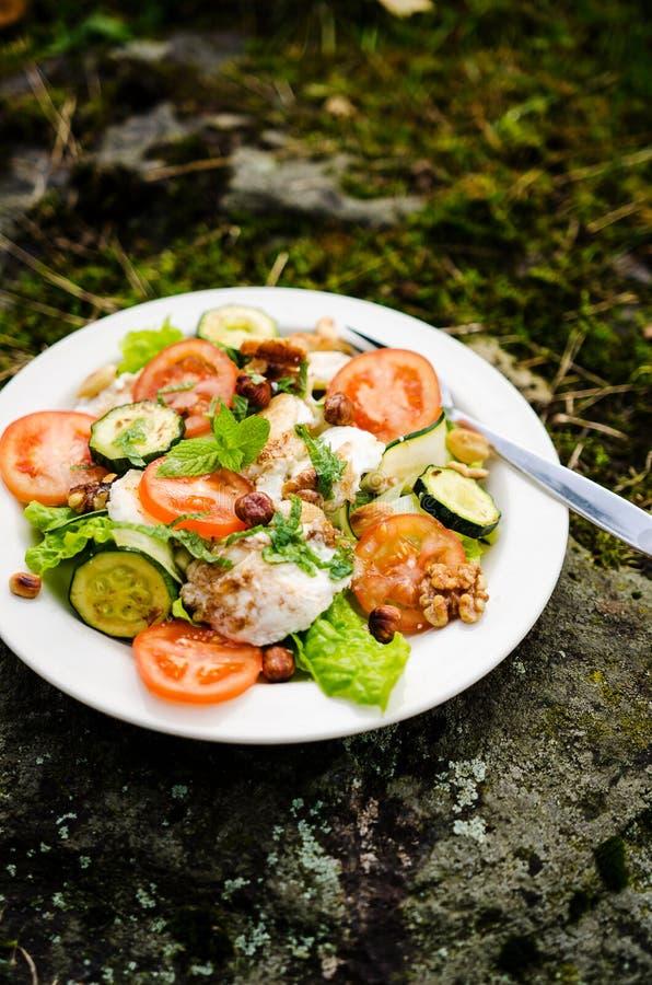 Salada misturada com queijo e os vegetais cozidos de cabra foto de stock