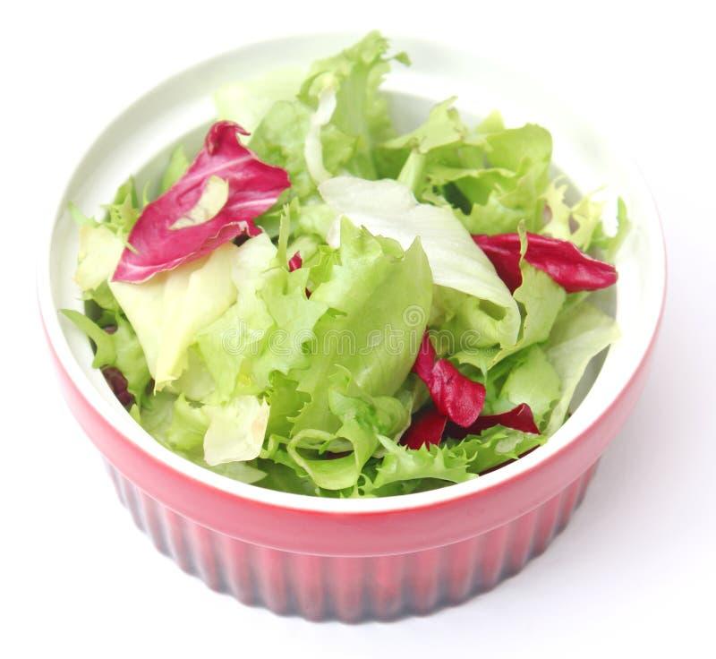 Salada misturada em uma bacia fotos de stock royalty free
