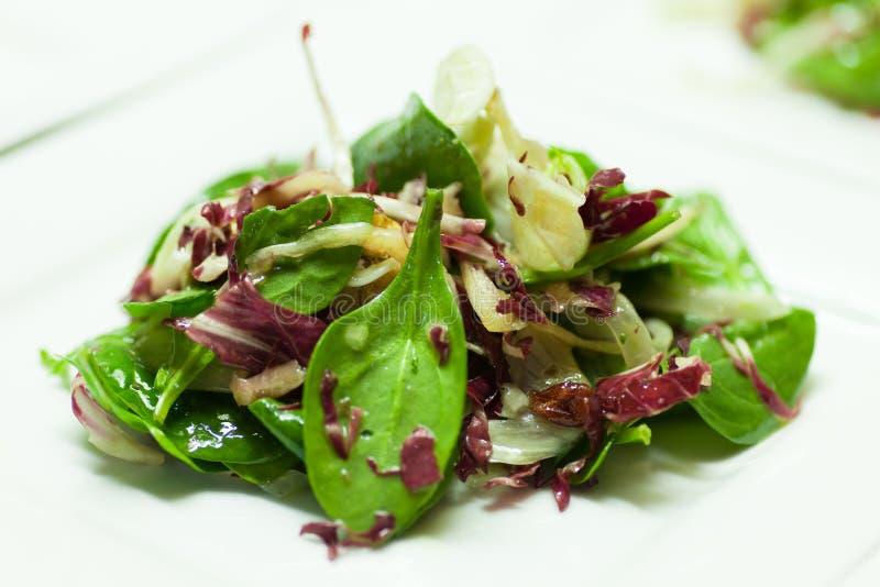 Salada misturada fresca imagens de stock