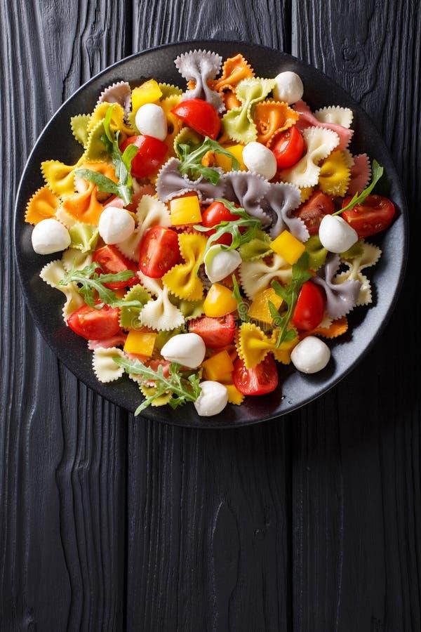 Salada morna da massa do farfalle, dos tomates, da rúcula e da mussarela c imagens de stock
