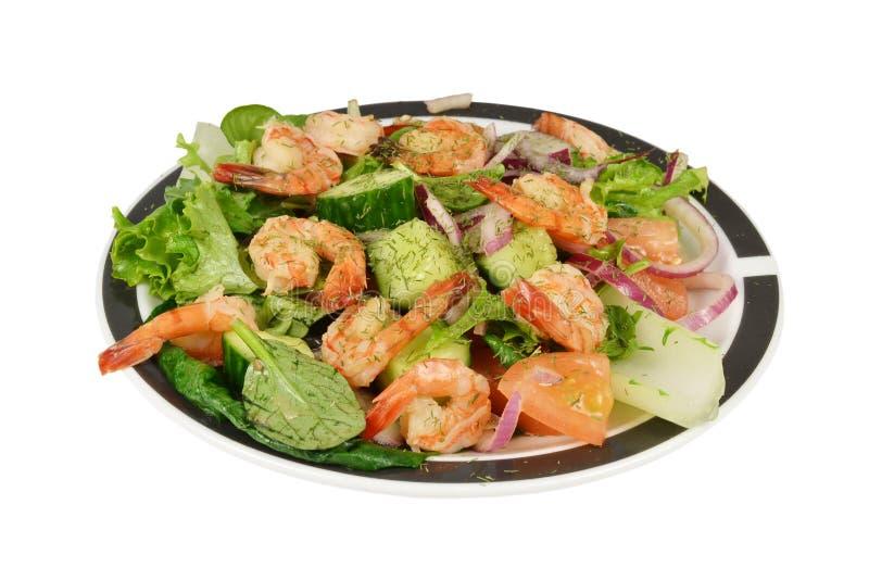 Salada oriental do camarão dos camarões. imagens de stock royalty free