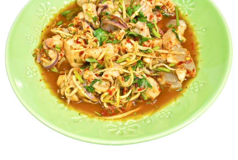 Salada picante asiática do calamar fotos de stock royalty free