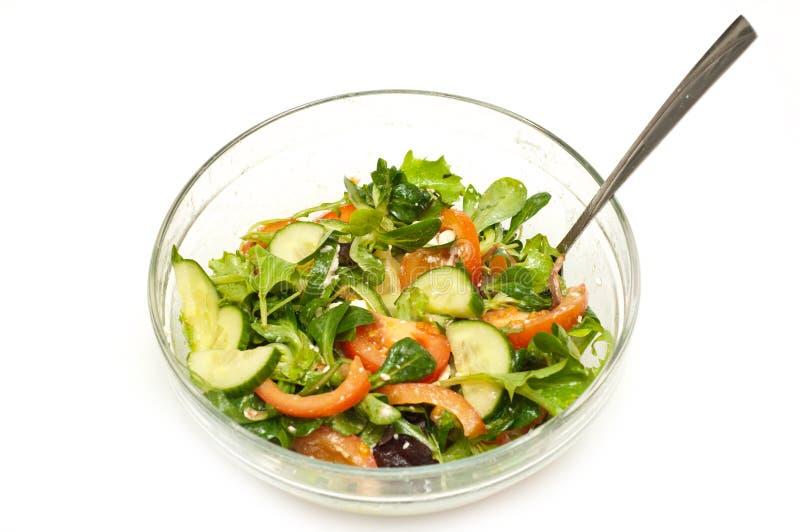 Salada recentemente feita foto de stock royalty free
