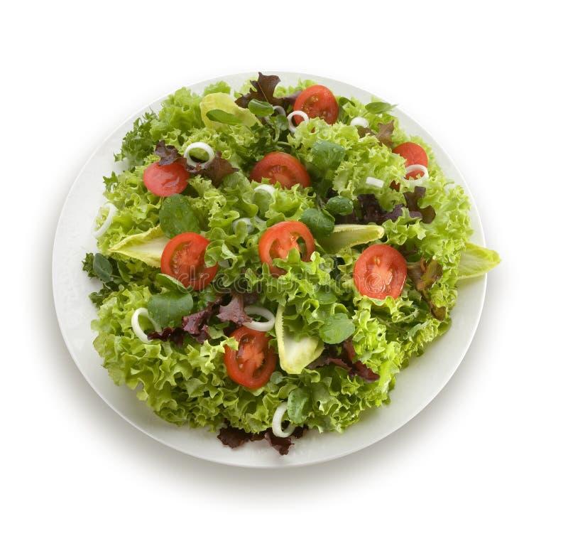 Salada saudável do jardim foto de stock royalty free