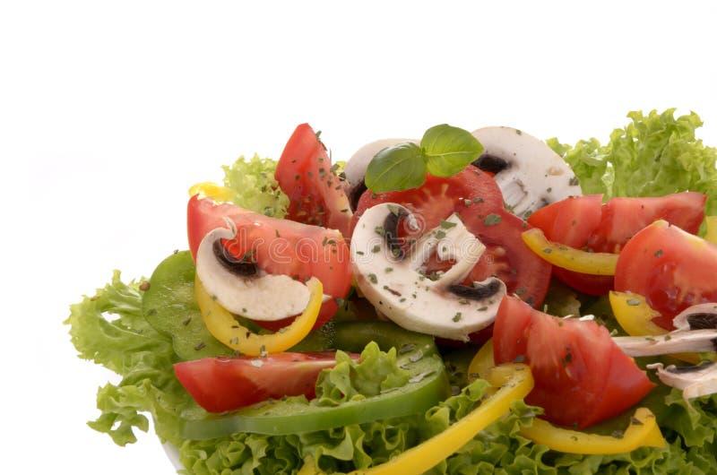 Salada simples fresca fotografia de stock royalty free