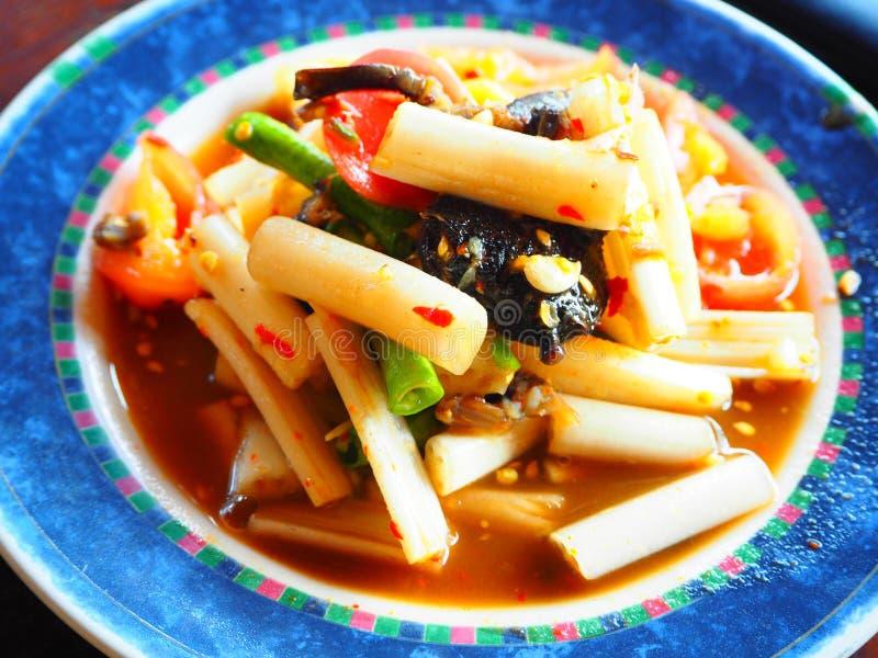 Salada tailandesa dos lótus da raiz imagem de stock
