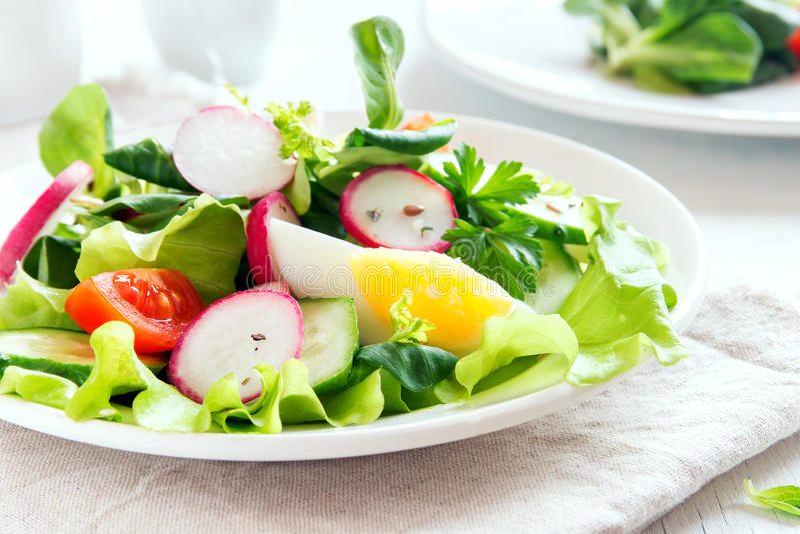 Salada vegetal da mola com ovo fotografia de stock royalty free
