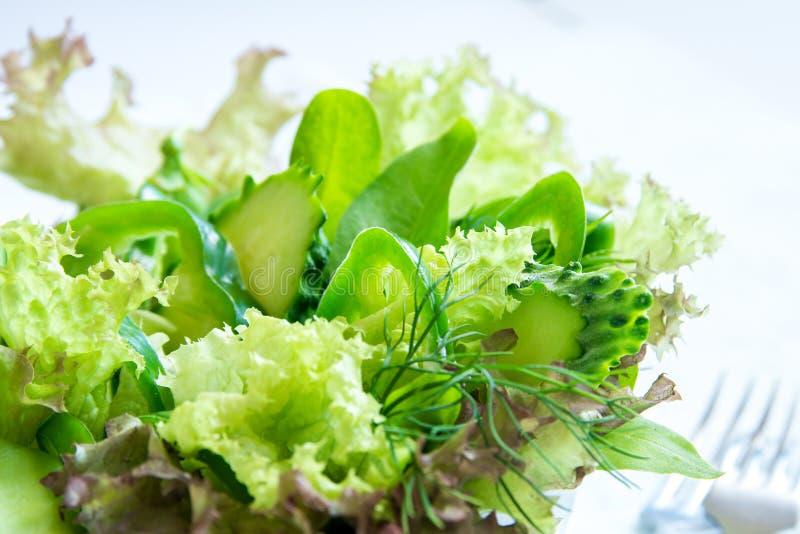 Salada vegetal verde foto de stock