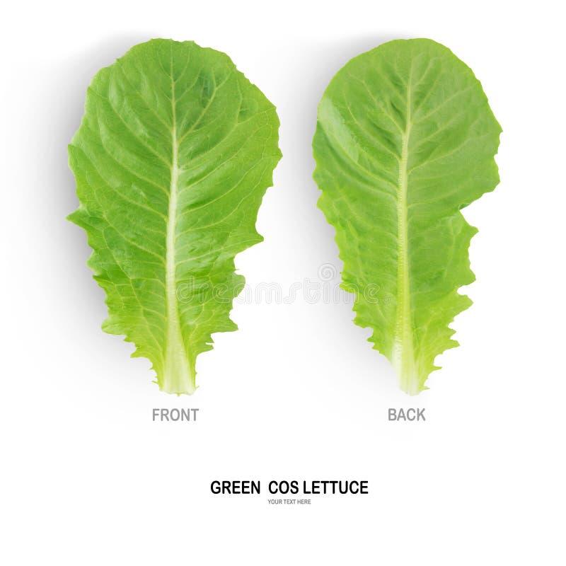 Salada VERDE de COS isolada no fundo branco foto de stock