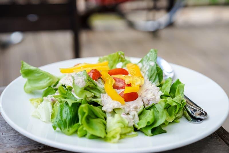 Salada verde do atum imagens de stock royalty free