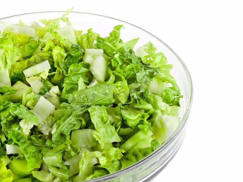 Salada verde fresca imagens de stock