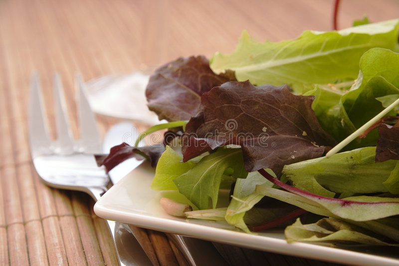 Salada verde fresca fotos de stock