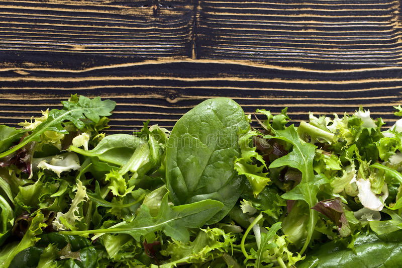 Salada verde fresca com espinafres, rúcula e alface foto de stock royalty free