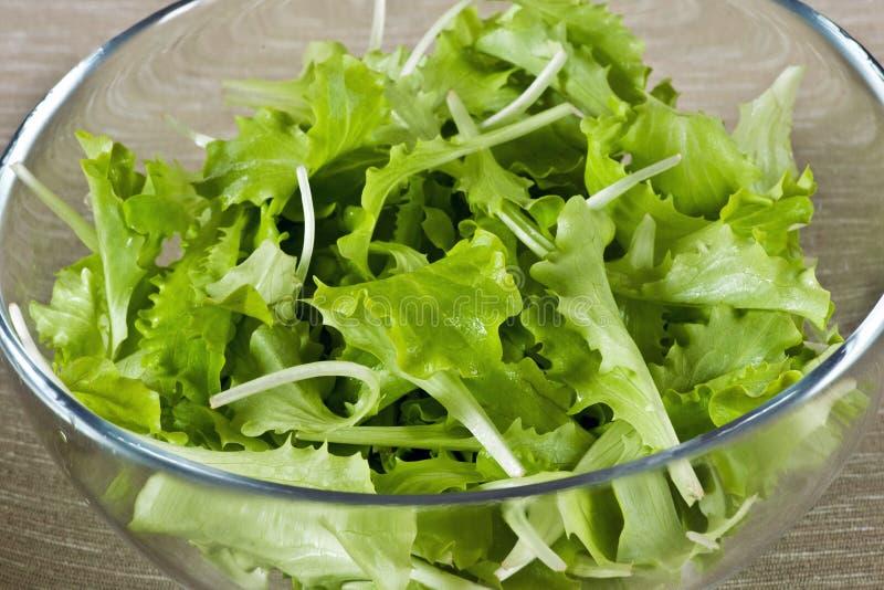 Salada verde frondosa fresca em uma bacia de vidro foto de stock