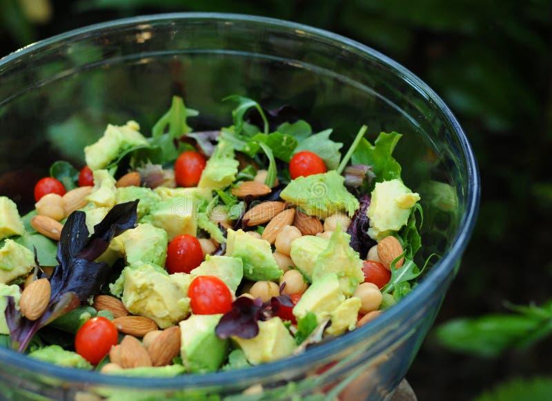 Salada verde misturada imagem de stock royalty free