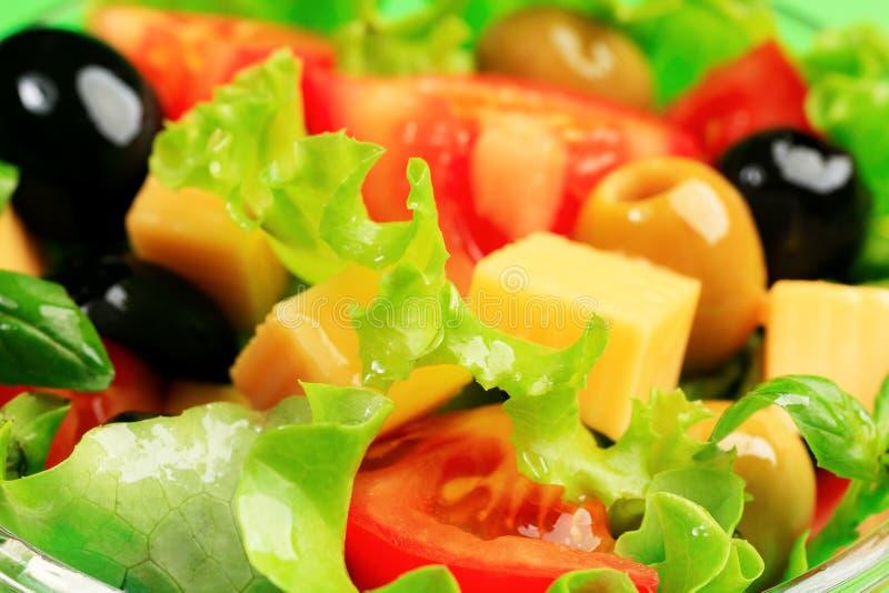 Salada verde-oliva imagens de stock