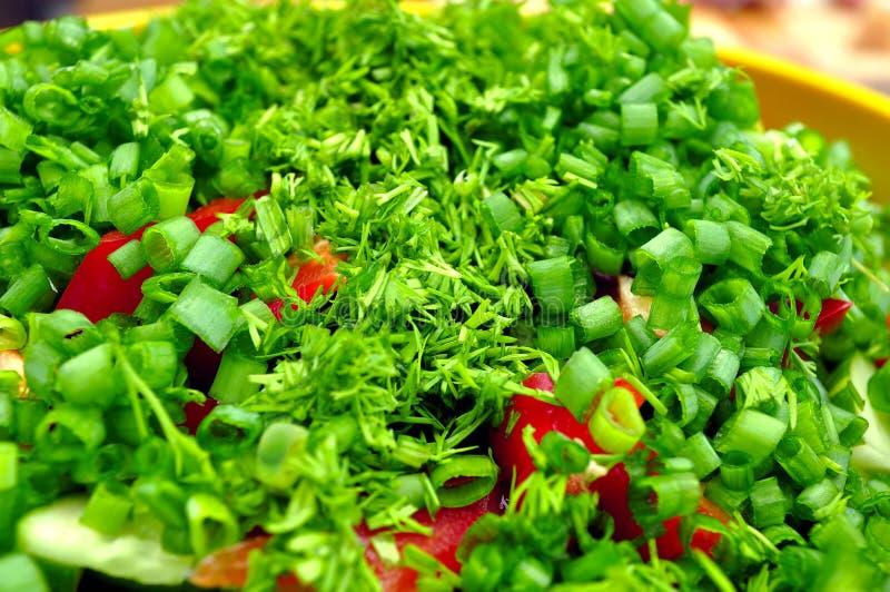 Saladas do verão imagens de stock royalty free