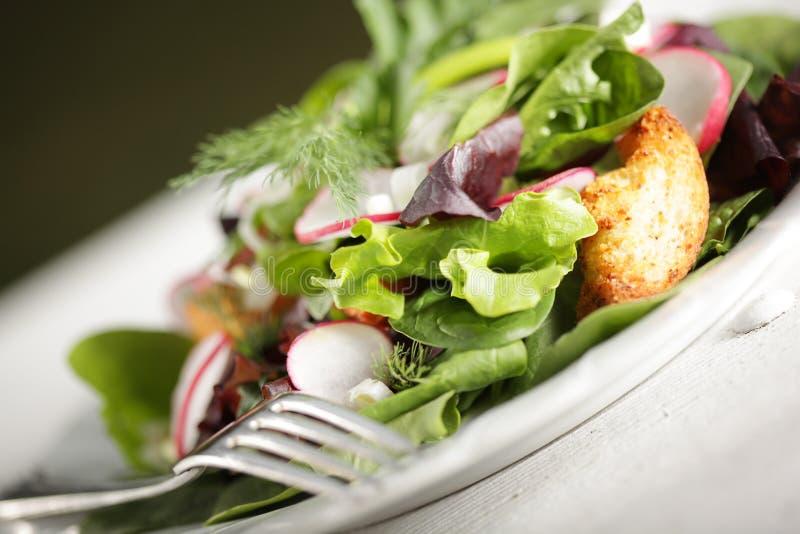 Salade avec des croûtons photographie stock libre de droits