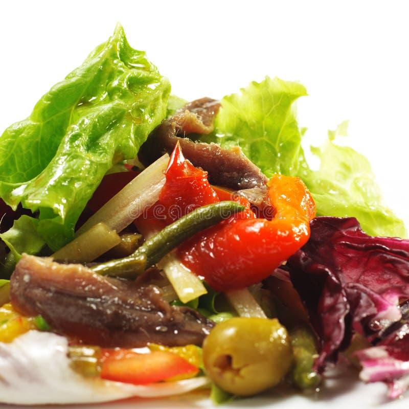 Salade avec l'anchois image libre de droits