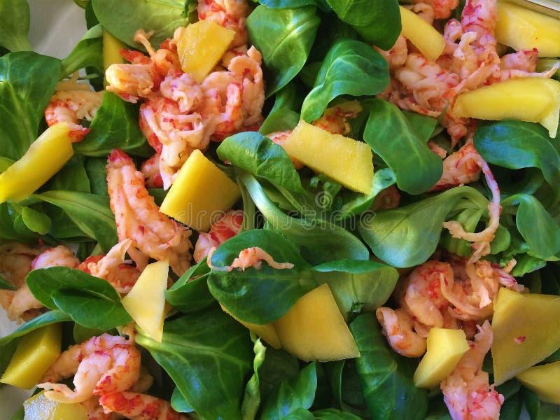 Salade avec la crevette et la mangue photo libre de droits