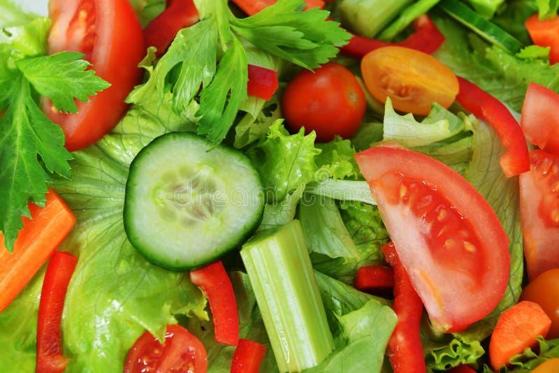 Salade avec le légume images libres de droits