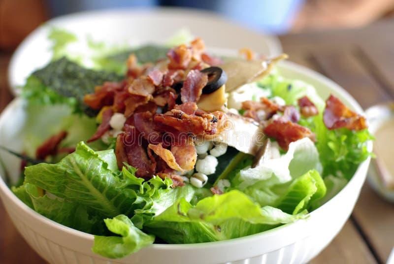 Salade avec le lard, salade ceasar photos libres de droits