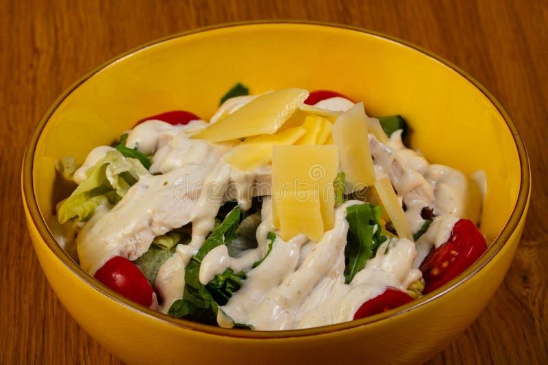 Salade avec le poulet photographie stock libre de droits