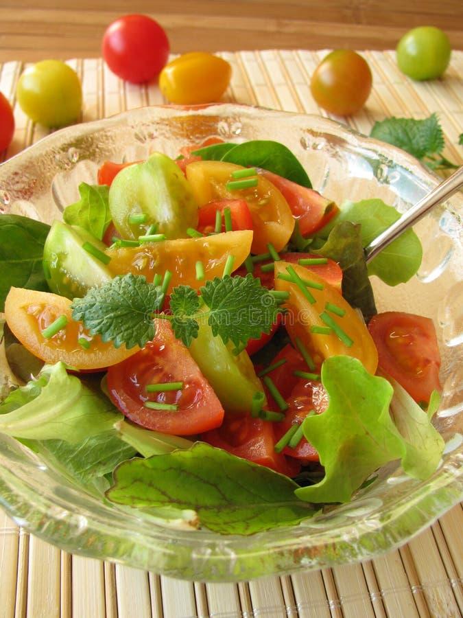 Salade avec les tomates colorées images libres de droits
