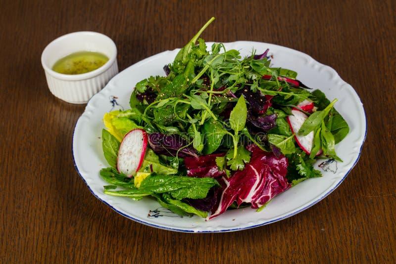 Salade avec raddish photo stock