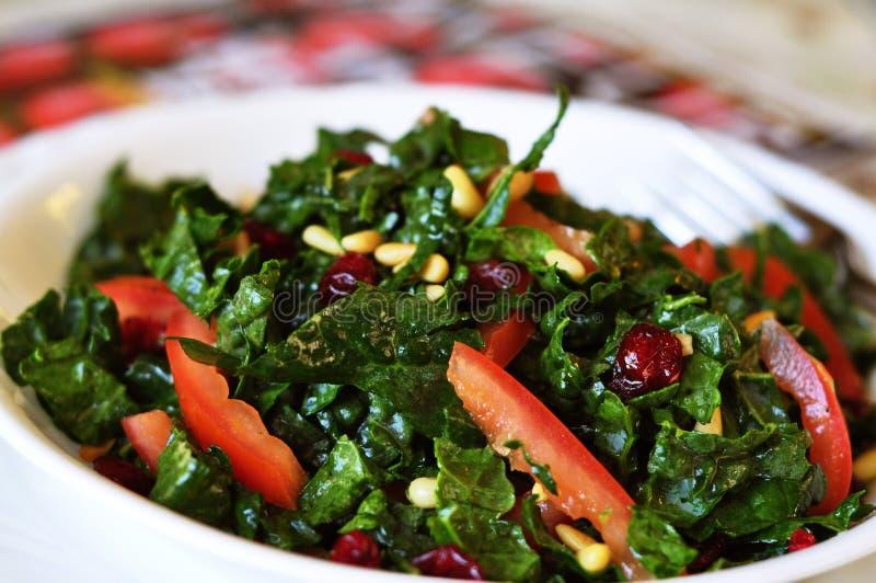 Salade crue de chou frisé photographie stock