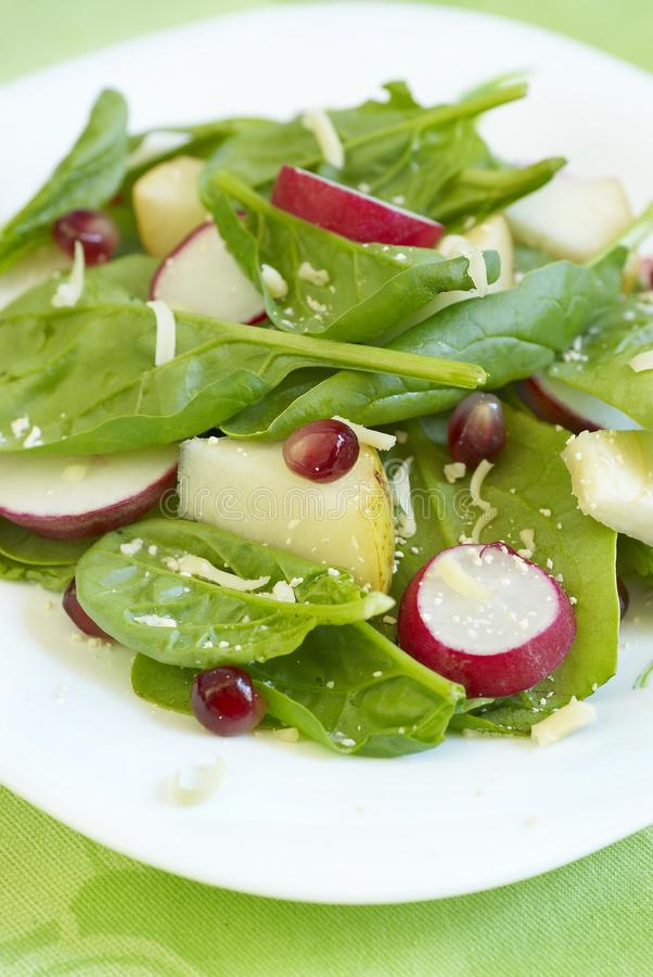Salade d'épinards photographie stock libre de droits