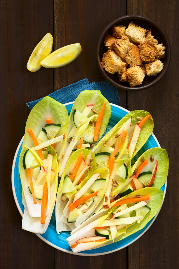 Salade d'endive et de légume images libres de droits
