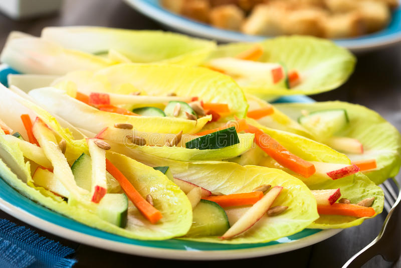 Salade d'endive et de légume photos libres de droits