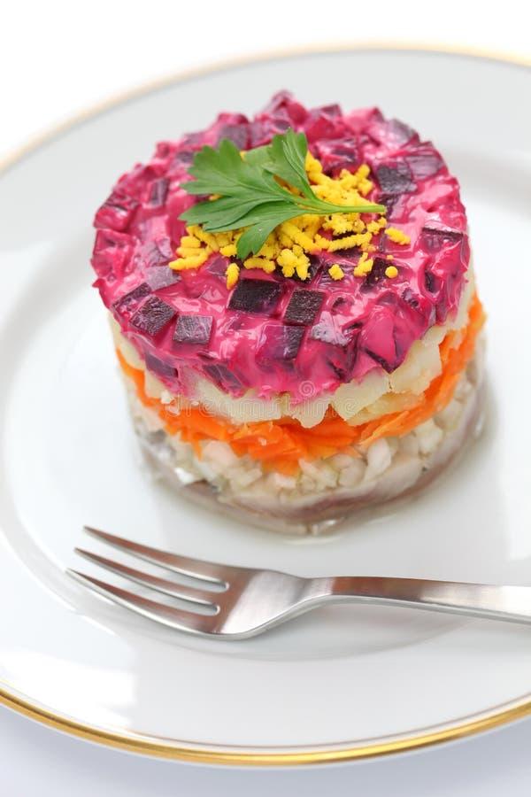 Salade d'harengs russe images stock