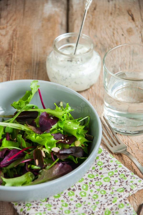 Salade d'herbes de ressort avec les graines de lin de sésame et et le cre aigre épicé photos stock