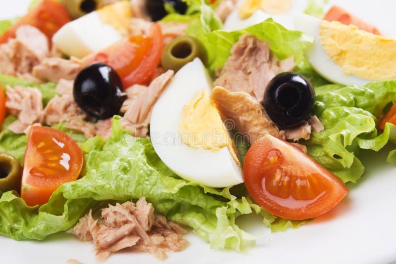 Salade d'oeufs et de thon photos libres de droits