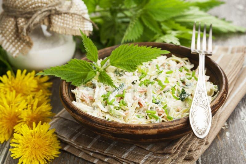 Salade d'ortie avec le chou photos stock