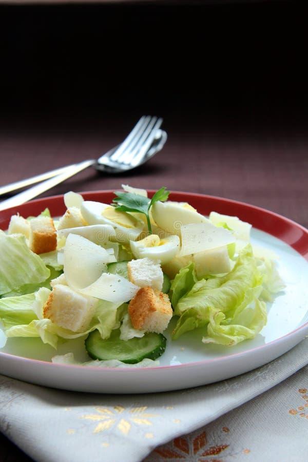 Salade de César photographie stock