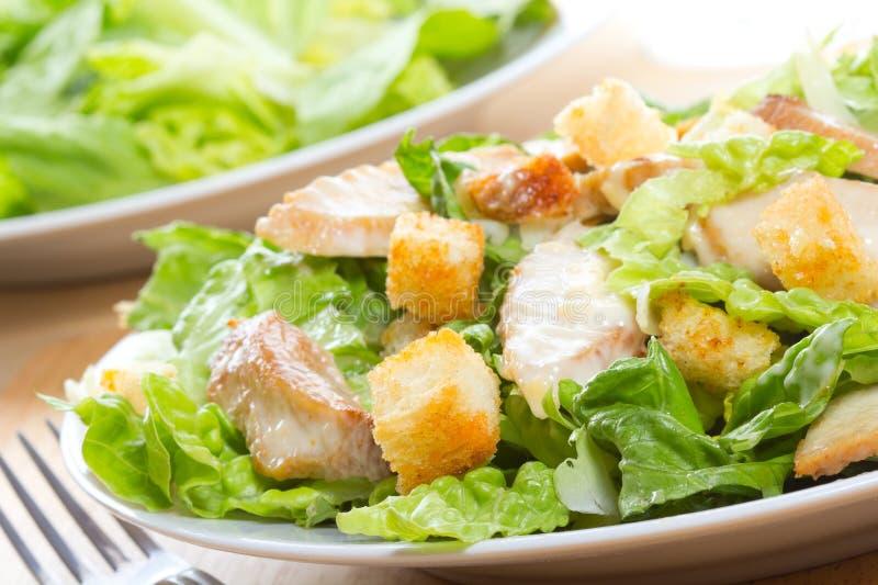 Salade de César image stock