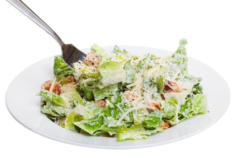 Salade de César photo libre de droits