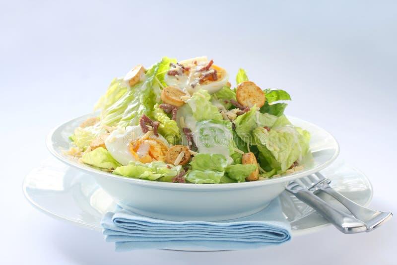 Salade de César photos libres de droits