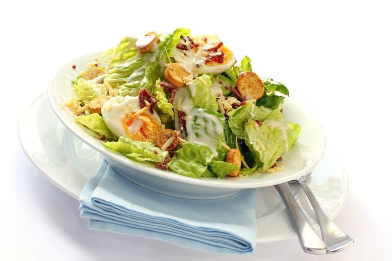 Salade de César photos stock