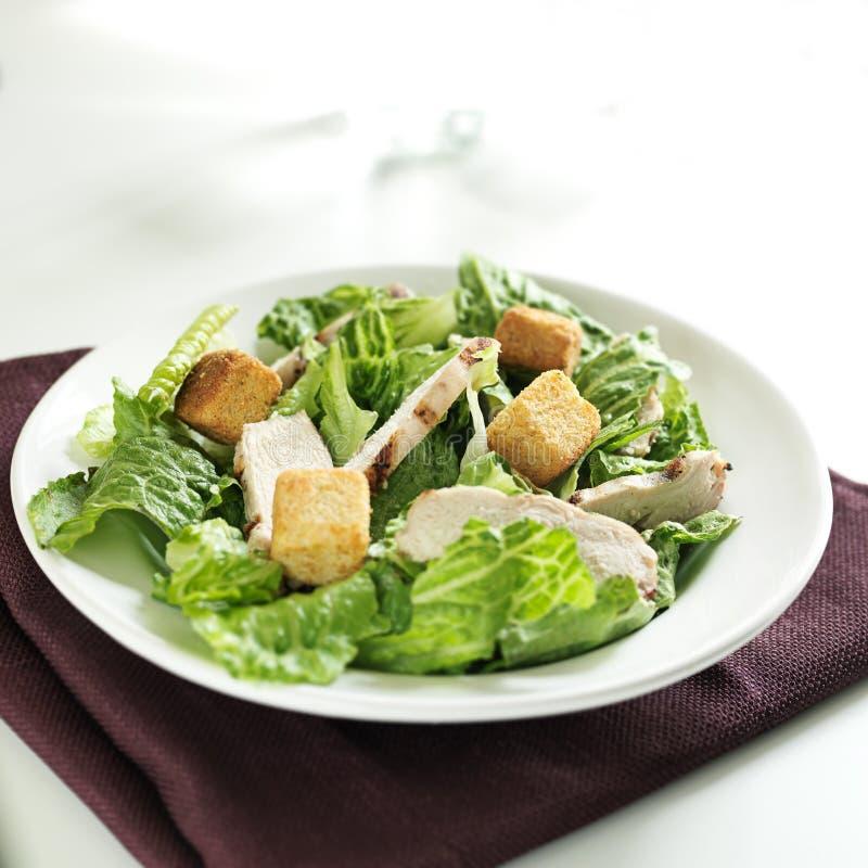 Salade de César avec l'espace grillé de poulet et de copie photographie stock