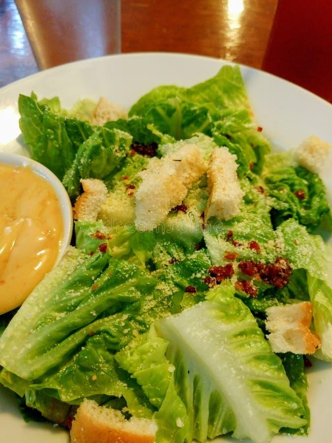 Salade de César de laitue photographie stock libre de droits
