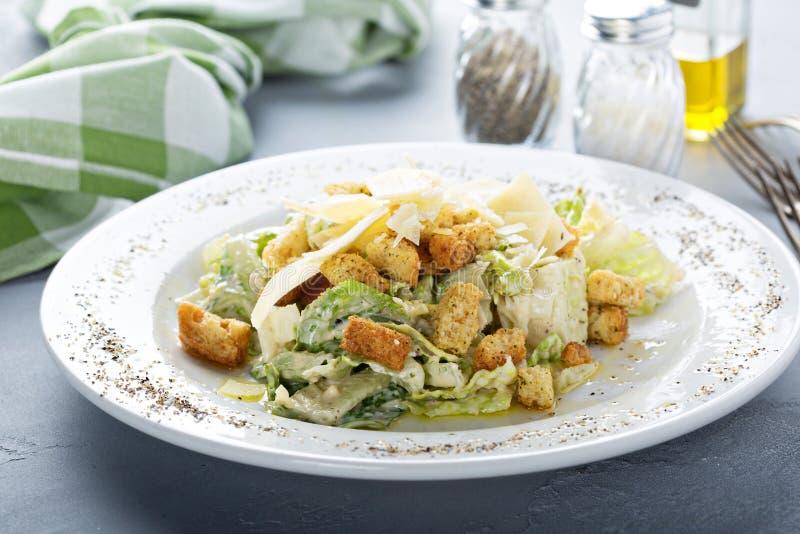Salade de César pour le déjeuner photos stock