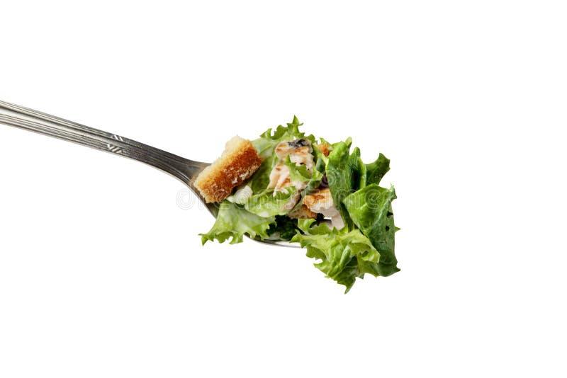 Salade de Cesar dans une fourchette images libres de droits