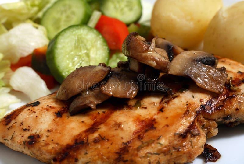 Salade de champignon de couche de viande de poulet photo libre de droits