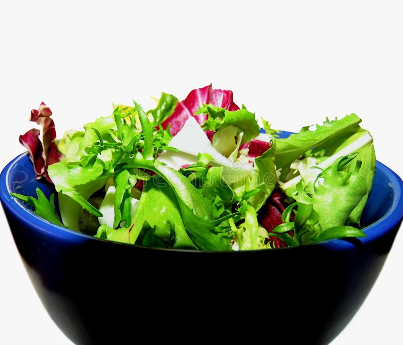 Salade de chicorée, de radicchio et d'endive photographie stock