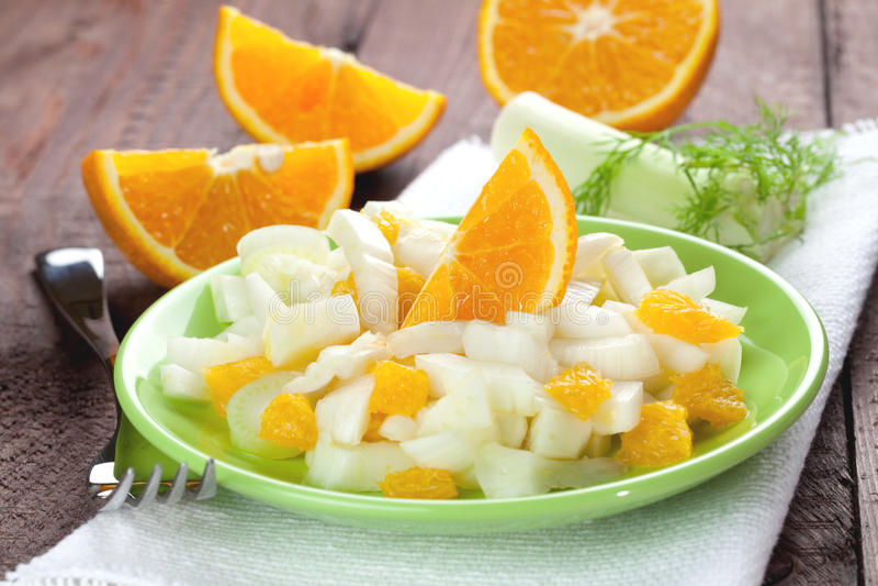 Salade de fenouil photographie stock libre de droits
